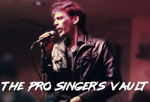 The Pro Singer's Vault