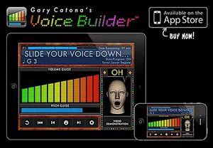 Voice Builder to go
